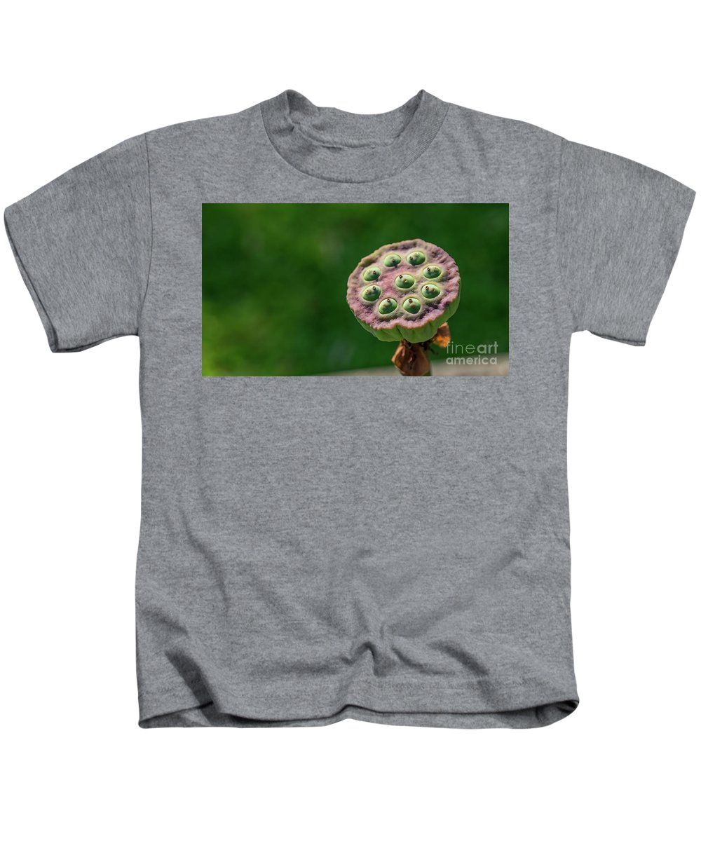 Lotus Kids T-Shirt featuring the photograph Lotus Seeds by Que Siam