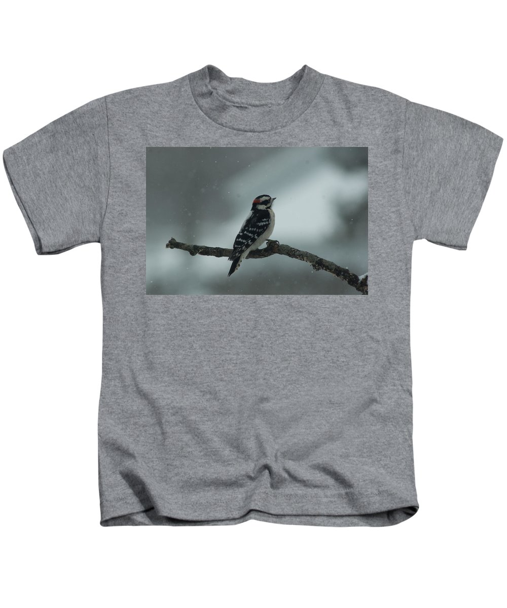 Aves Kids T-Shirt featuring the photograph downy Woodpecker by Craig Hosterman