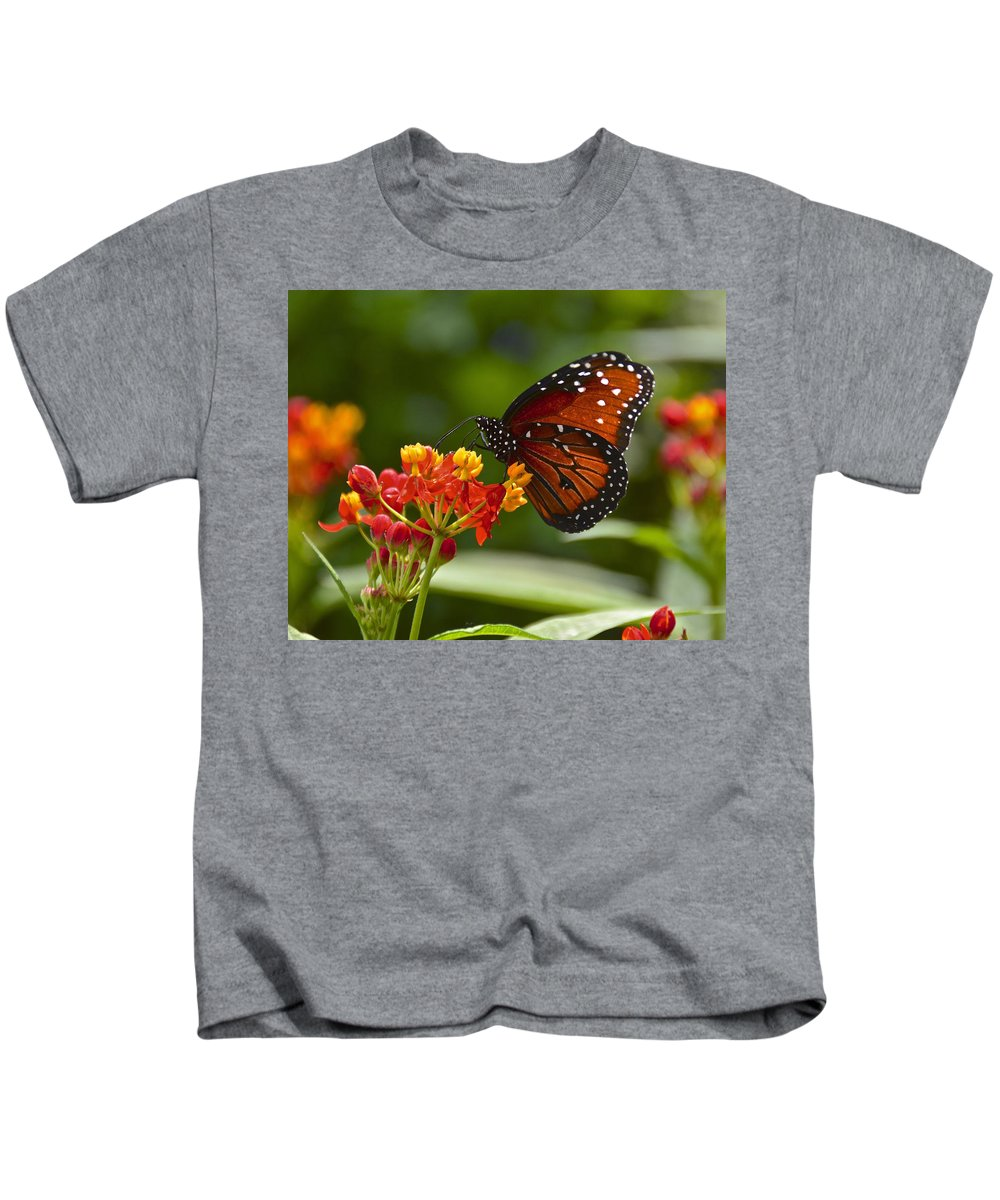 Butterfly Kids T-Shirt featuring the photograph A Sip Of Milkweed Nectar by Carol Bradley