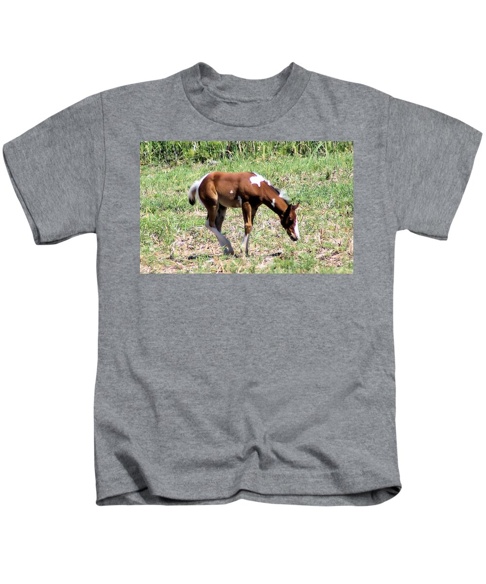 Horses Kids T-Shirt featuring the photograph A Young Painted Colt by Jeff Swan