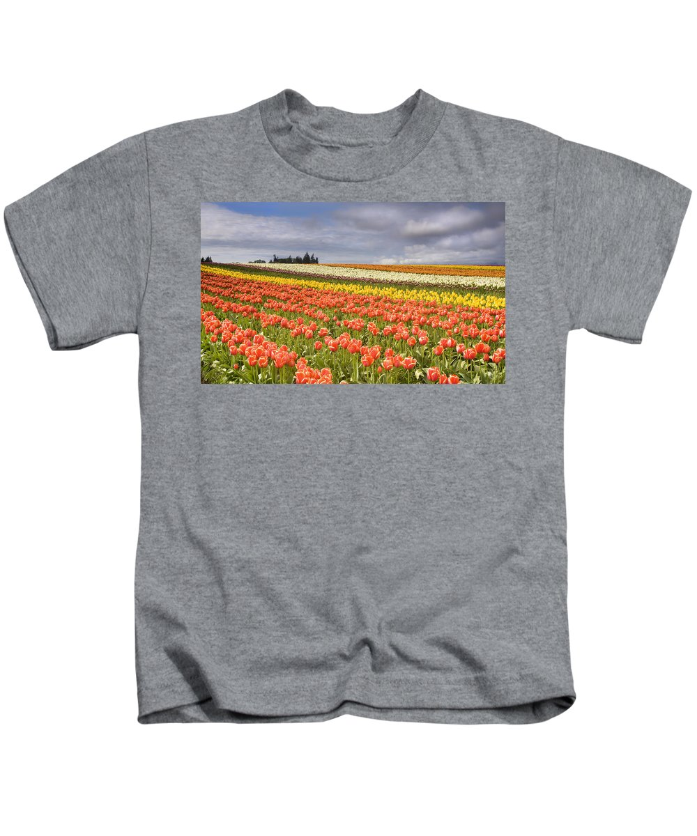 Tulips Kids T-Shirt featuring the photograph Across Colorful Fields by Mike Dawson