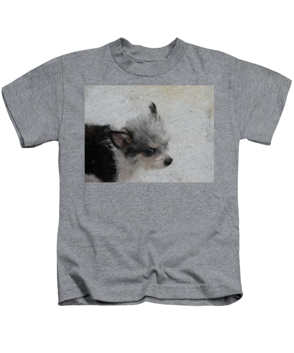 Puppy Kids T-Shirt featuring the photograph Airport Pup by Kelly Mezzapelle