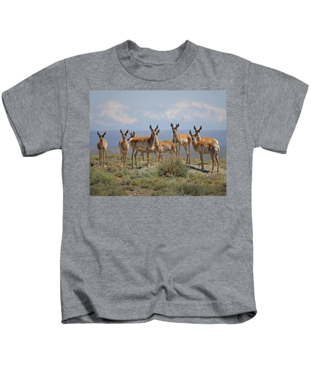 Antelope Kids T-Shirt featuring the photograph Antelope by Heather Coen