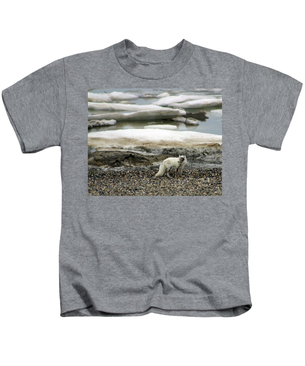 Fox Kids T-Shirt featuring the photograph Arctic Fox By Frozen Ocean by Anthony Jones