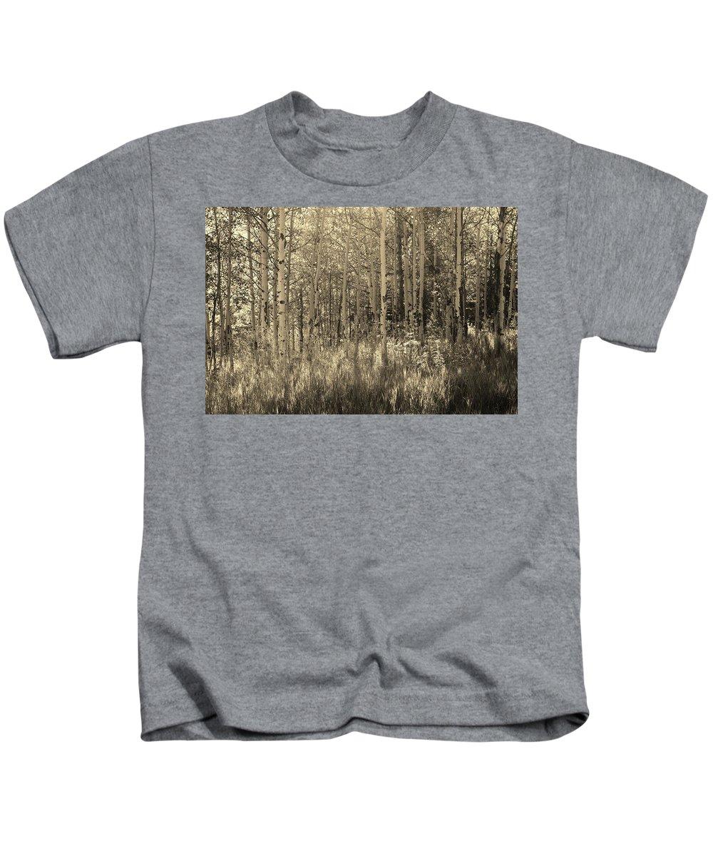 Aspen Kids T-Shirt featuring the photograph Aspen Light by K Hutchins