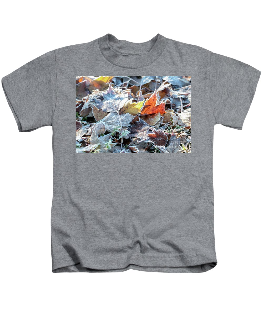 Autumn Kids T-Shirt featuring the photograph Autumn Ends, Winter Begins 3 by Linda Lees