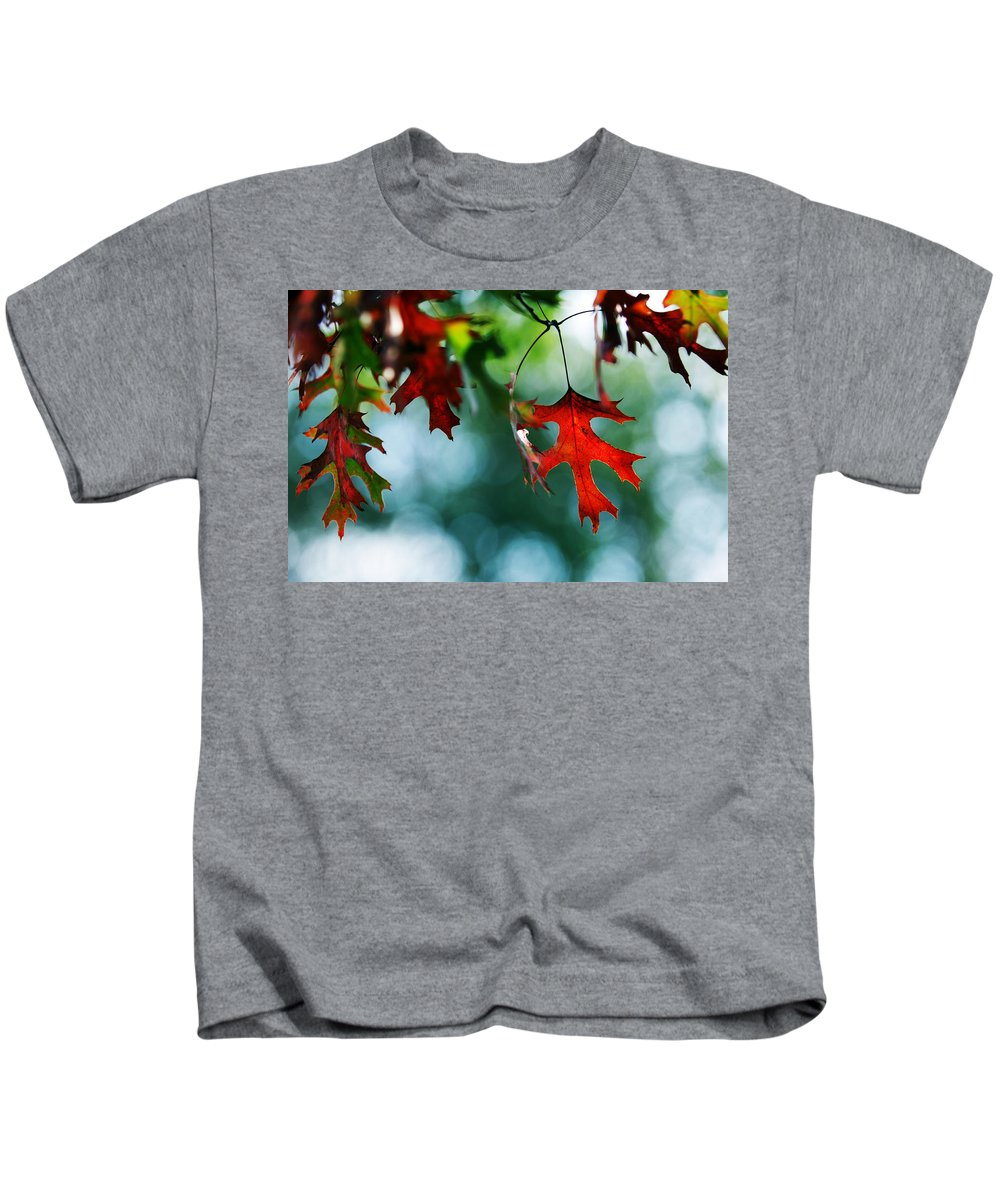 Autumn Fall Leaf Leaves Red Seasons Lone Nature Botanical Kids T-Shirt featuring the photograph Autumn Leaves by Jill Reger