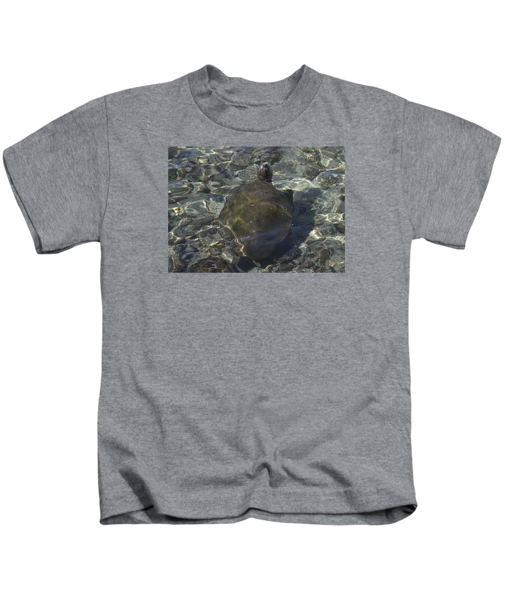 Sea Turtle Kids T-Shirt featuring the photograph Back Of Turtle by Karen Rose Warner