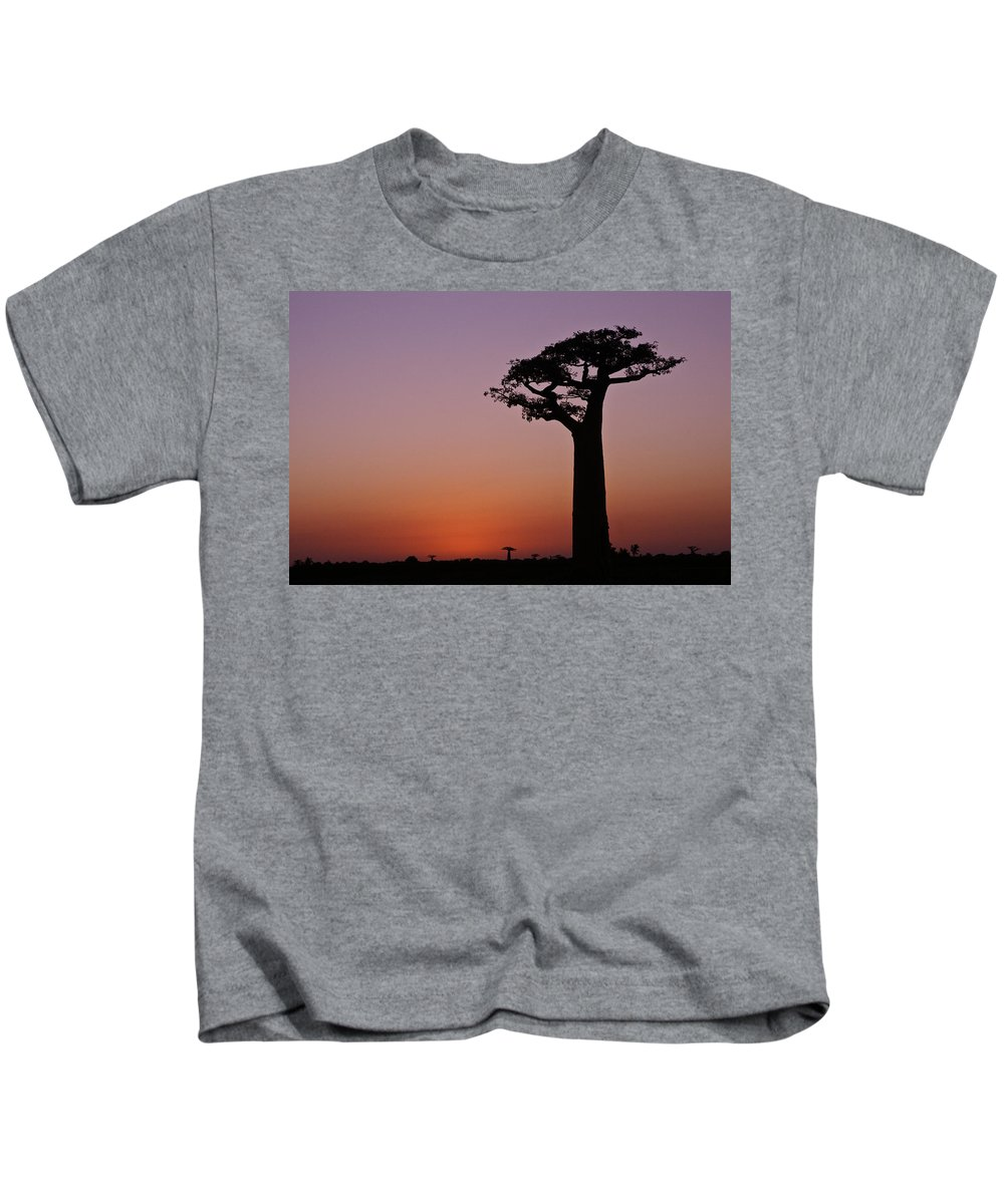 Madagascar Kids T-Shirt featuring the photograph Baobab At Sunset by Michele Burgess