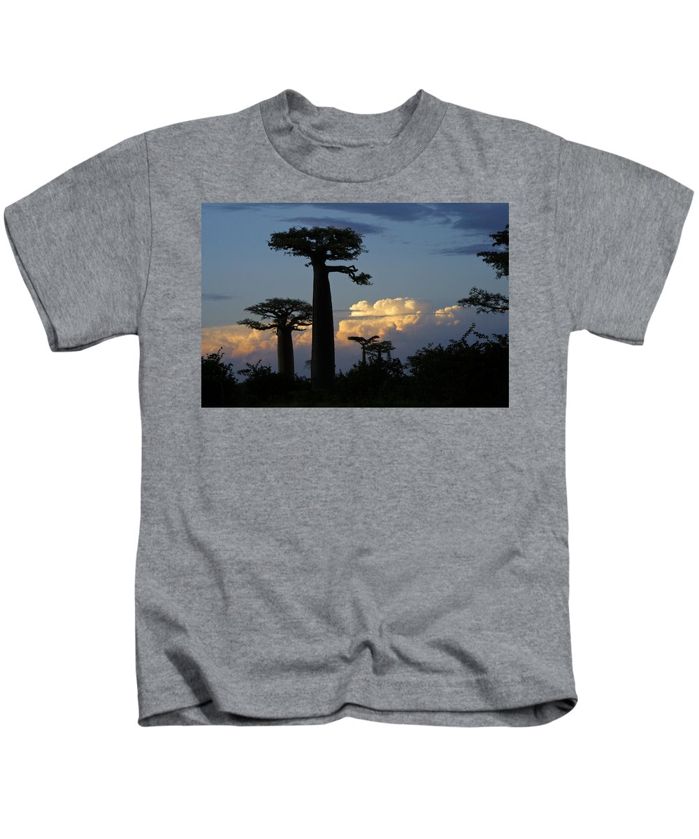 Madagascar Kids T-Shirt featuring the photograph Baobabs And Storm Clouds by Michele Burgess
