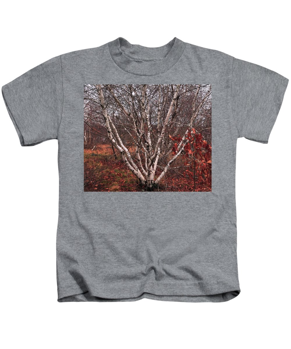 Beautiful White Birch Rock Island Houghs Neck Quincy Ma Kids T-Shirt featuring the photograph Beautiful White Birch by Bill Driscoll