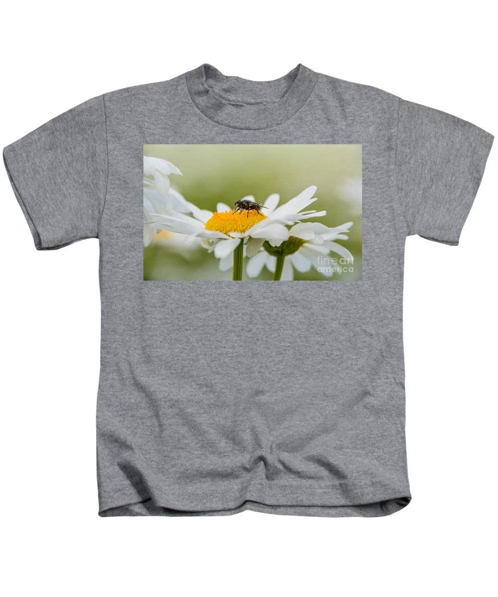 Insect Kids T-Shirt featuring the photograph Beauty And The Beast by Lisa Kilby