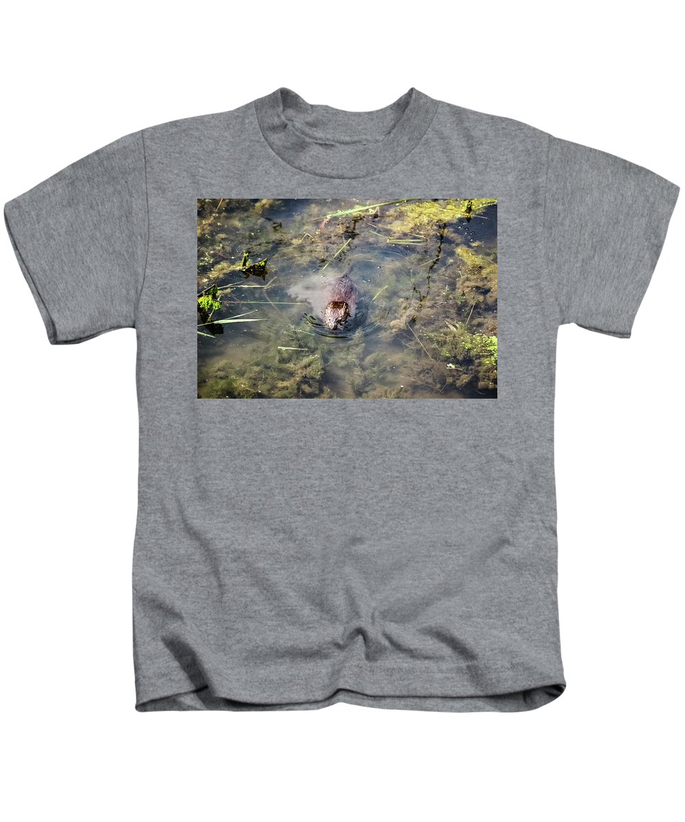 Beaver Spotted The Great Beaver Escape 01 Kids T-Shirt featuring the photograph Beaver Spotted The Great Beaver Escape 01 by Cynthia Woods