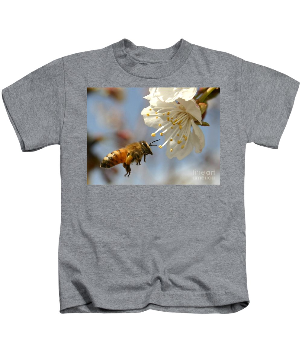 Honey Kids T-Shirt featuring the photograph Bee And A Blossom by Danny Yanai