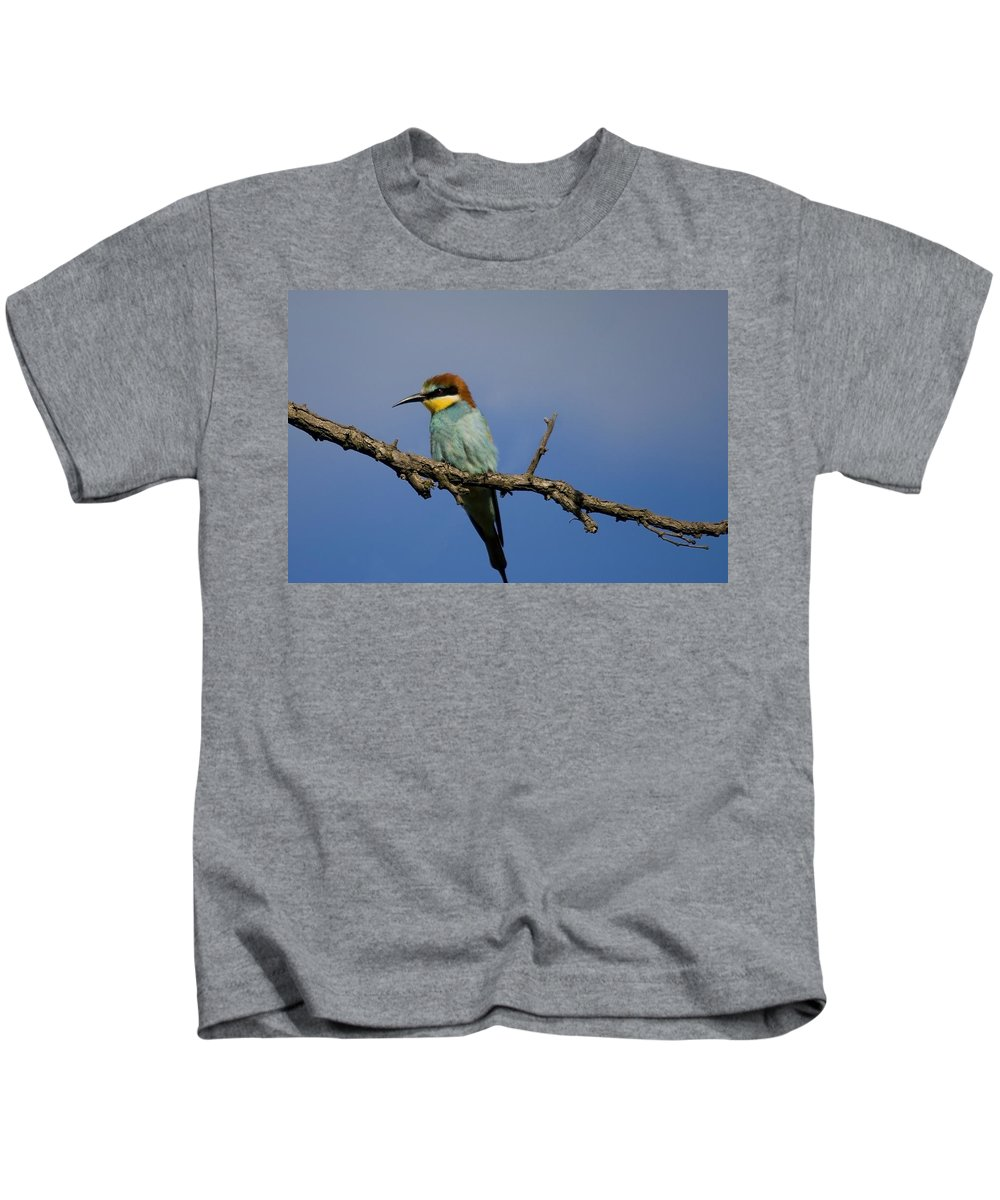 Bee Eater Kids T-Shirt featuring the photograph Bee Eater by Cliff Norton