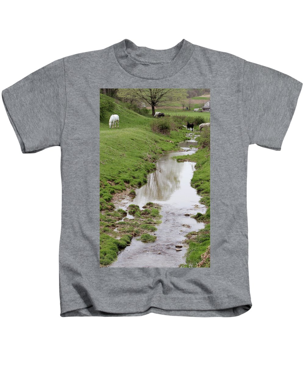 Mammal Kids T-Shirt featuring the photograph Beside The Still Waters Percherons by Susie Gordon