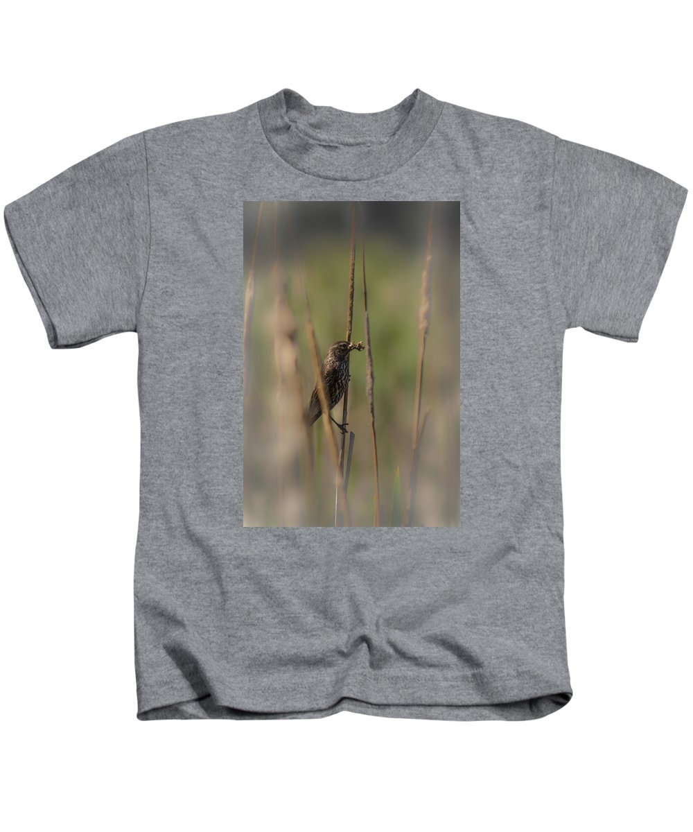 Kids T-Shirt featuring the photograph Bird 3 by Reed Tim