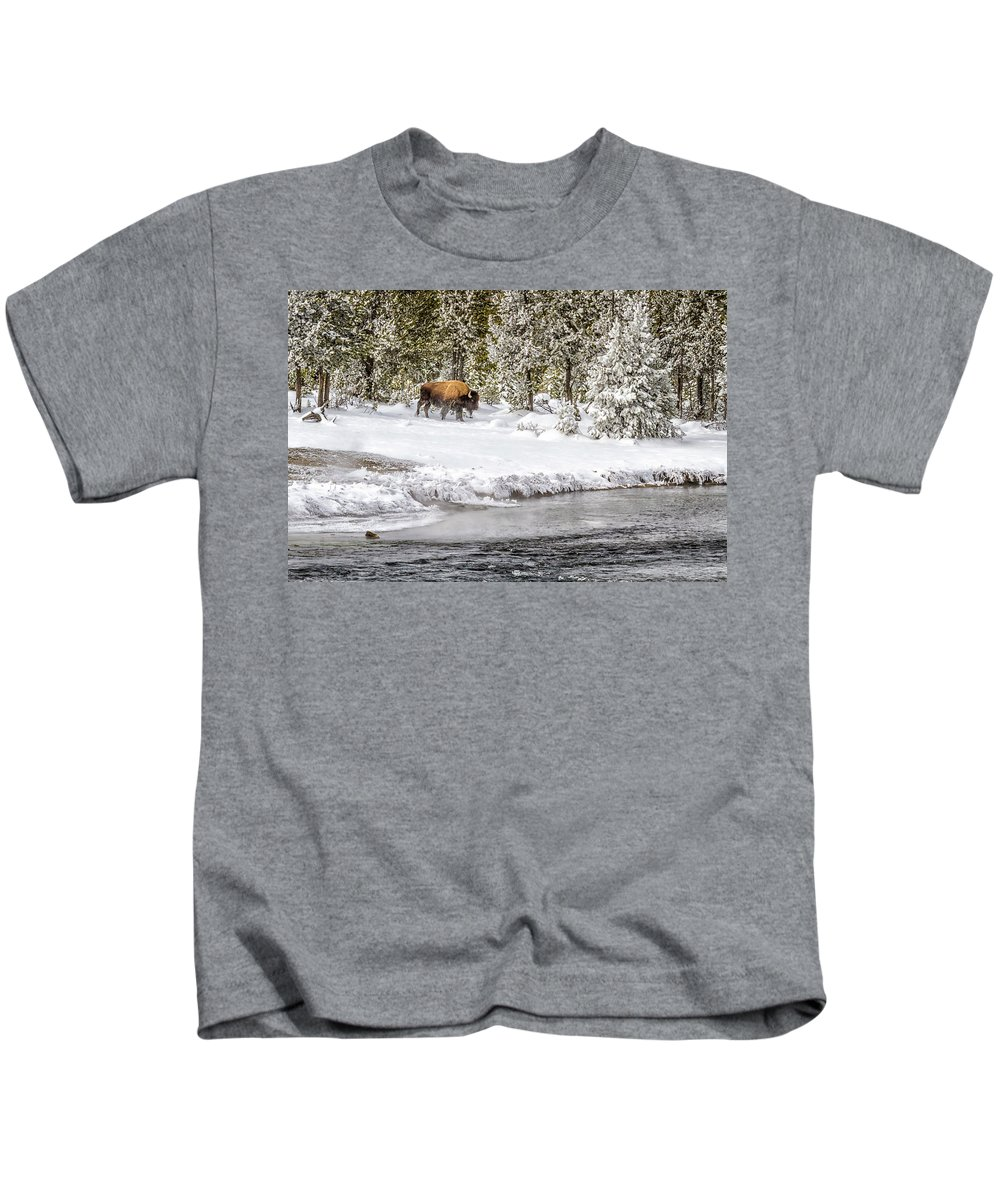Yellowstone Kids T-Shirt featuring the photograph Bison Country 8101 by Karen Celella