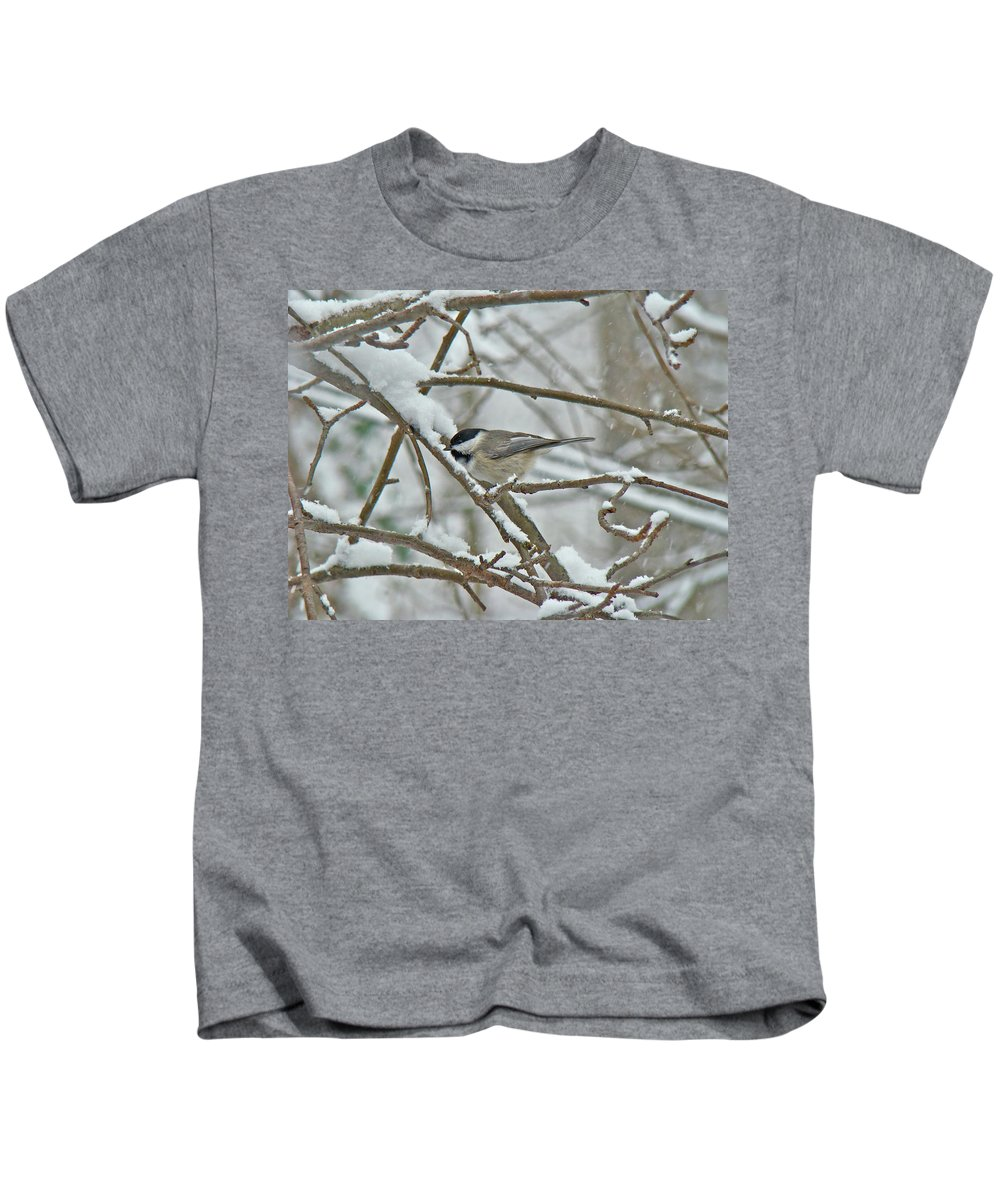 Chickadee Kids T-Shirt featuring the photograph Black Capped Chickadee - Poecile Atricapillus by Mother Nature