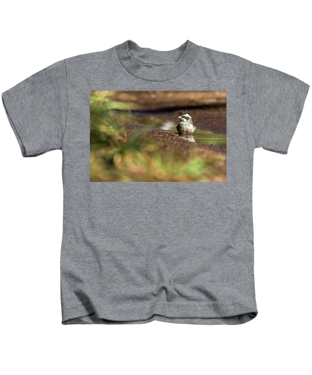 Bird Kids T-Shirt featuring the photograph Black-crested Finch by Pablo Rodriguez Merkel