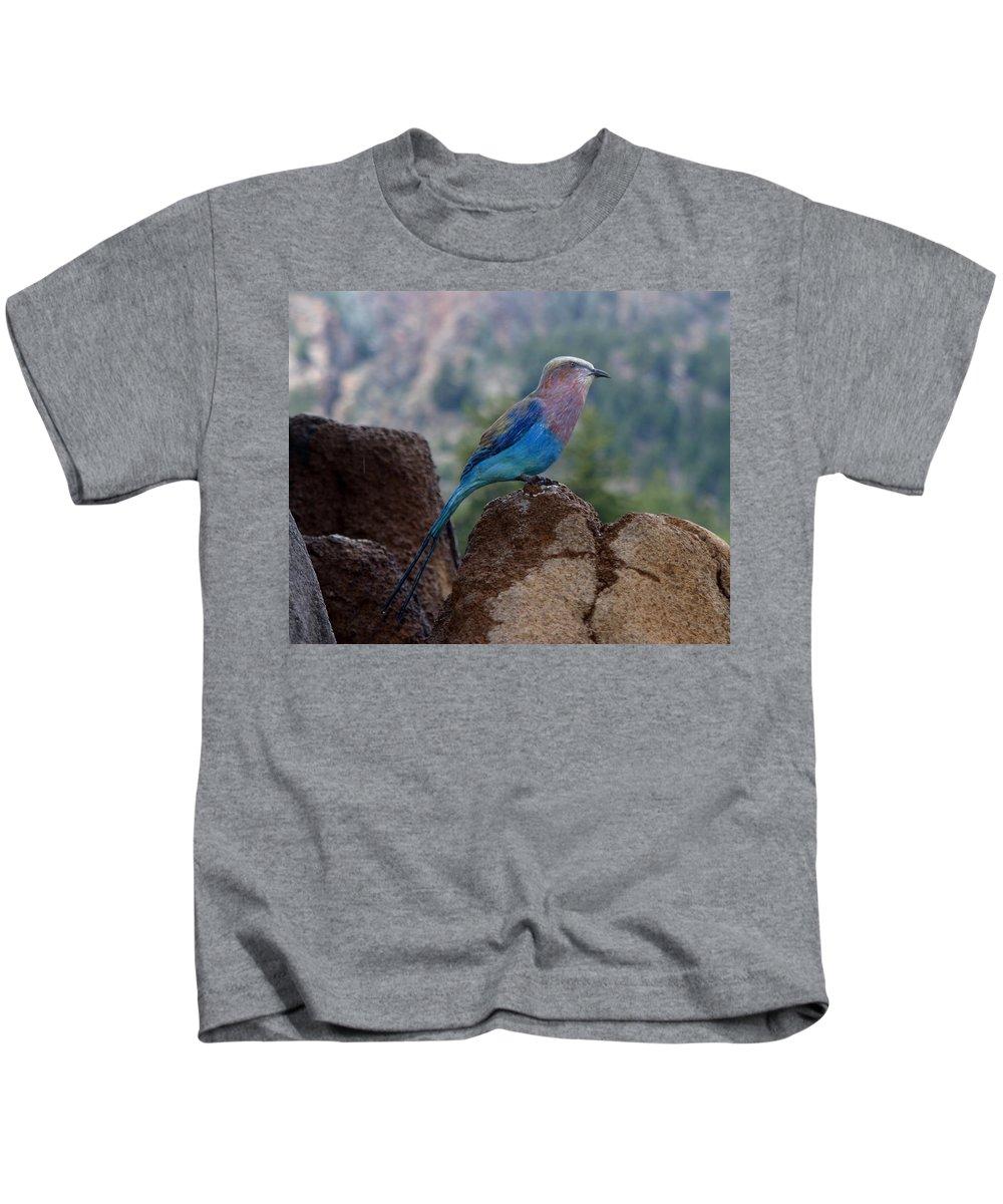 Bird Kids T-Shirt featuring the photograph Blue Bird by Anthony Jones