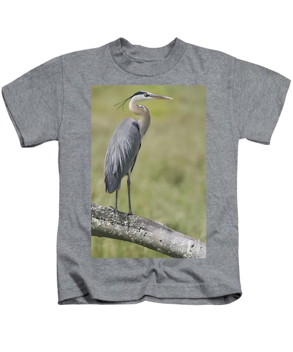Blueheron Kids T-Shirt featuring the photograph Blue Heron Portrait August 2010 by Deborah Benoit
