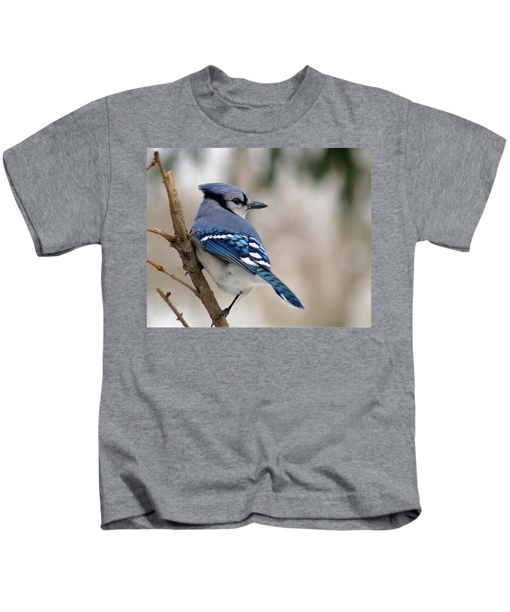 Blue Jay Kids T-Shirt featuring the photograph Blue Jay by Gaby Swanson