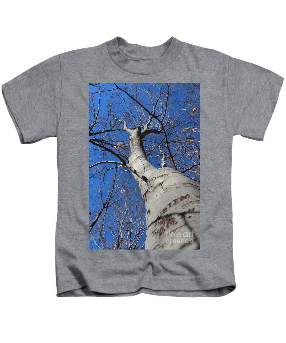 Tree Kids T-Shirt featuring the photograph Blue Sky Beech Tree by Sabrina Walters