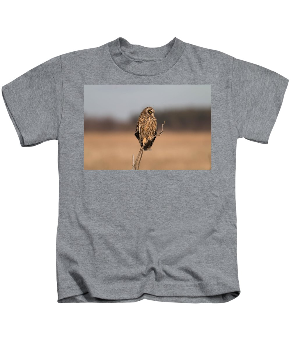 Short Eared Owl Kids T-Shirt featuring the photograph Breaktime by Rodney Ervin