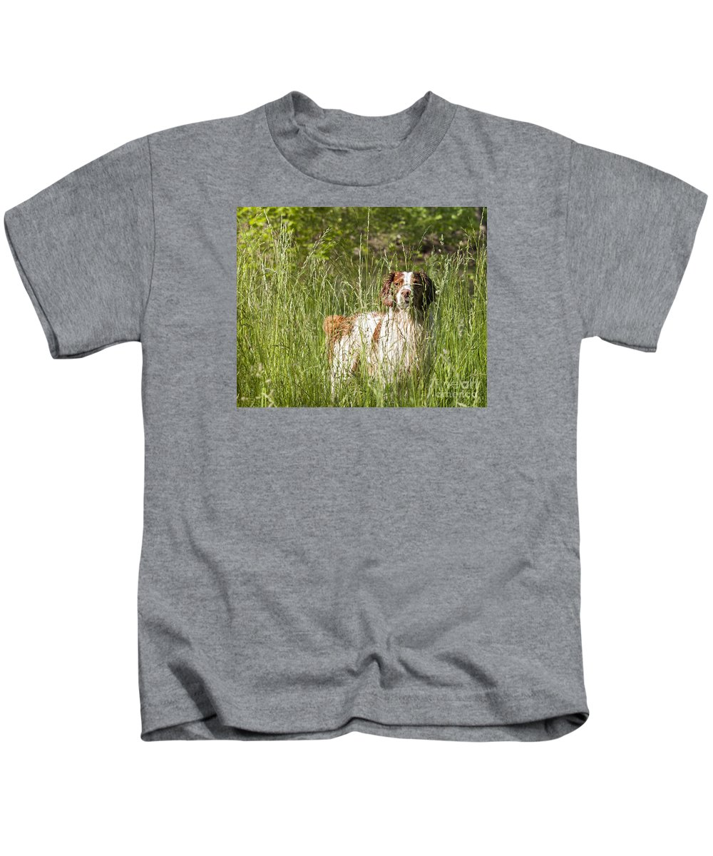 Debbie Flanigan Kids T-Shirt featuring the photograph Brittany In Tall Grass by Timothy Flanigan