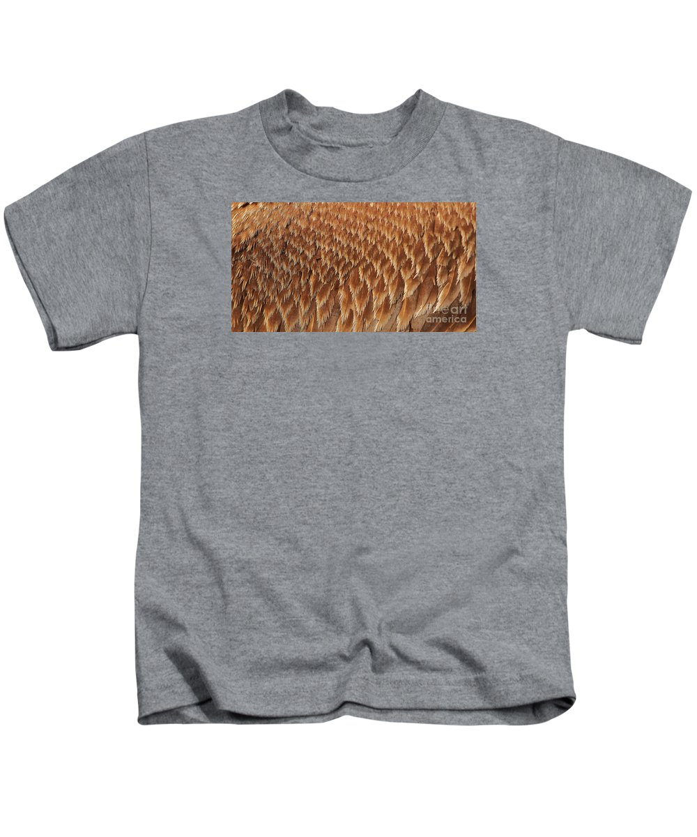 Pelican Kids T-Shirt featuring the photograph Brown Pelican Wings by Paulette Thomas