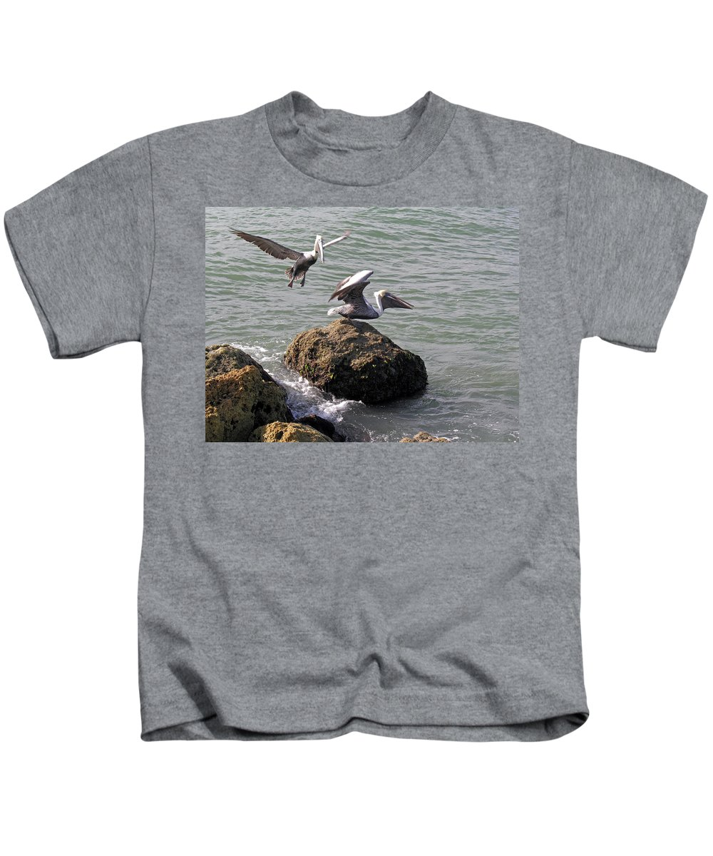 Pelican; Rock; Flying; Ocean; Sea; Bird; Florida; Action; Fight; Confrontation; Green; War; Fishing Kids T-Shirt featuring the photograph Brown Pelicans In Florida by Allan Hughes