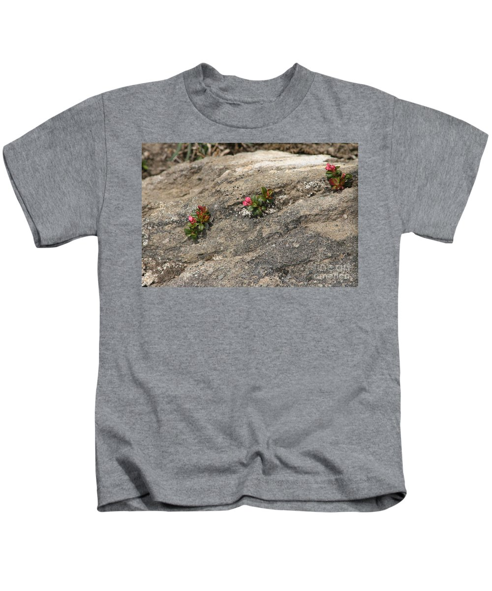 Nature Kids T-Shirt featuring the photograph Buds Of Beauty Within Harshness by Mary Mikawoz
