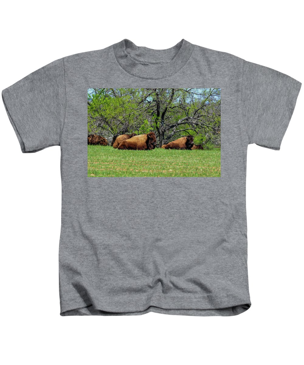 Texas Kids T-Shirt featuring the photograph Buffalo Resting In A Field by Marilyn Burton
