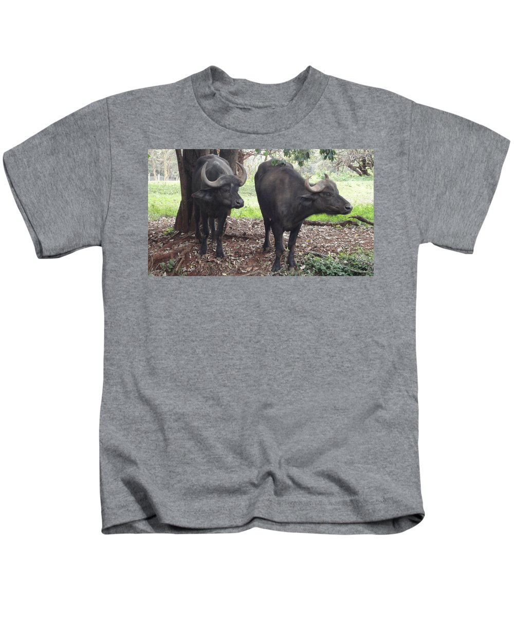 Buffaloes Kids T-Shirt featuring the photograph Buffaloes by Serah Mbii