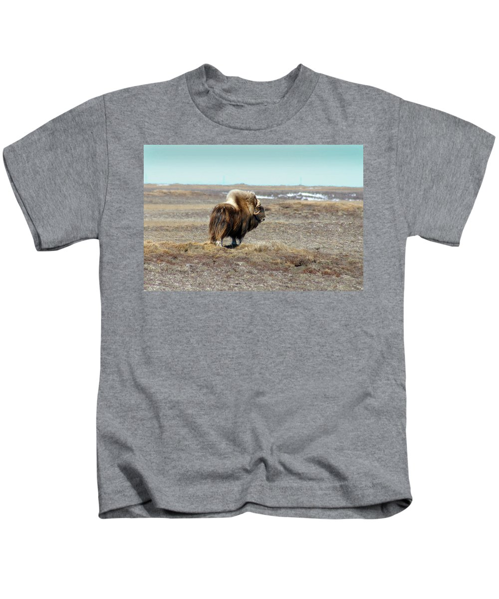 Bull Kids T-Shirt featuring the photograph Bull Musk Ox by Anthony Jones