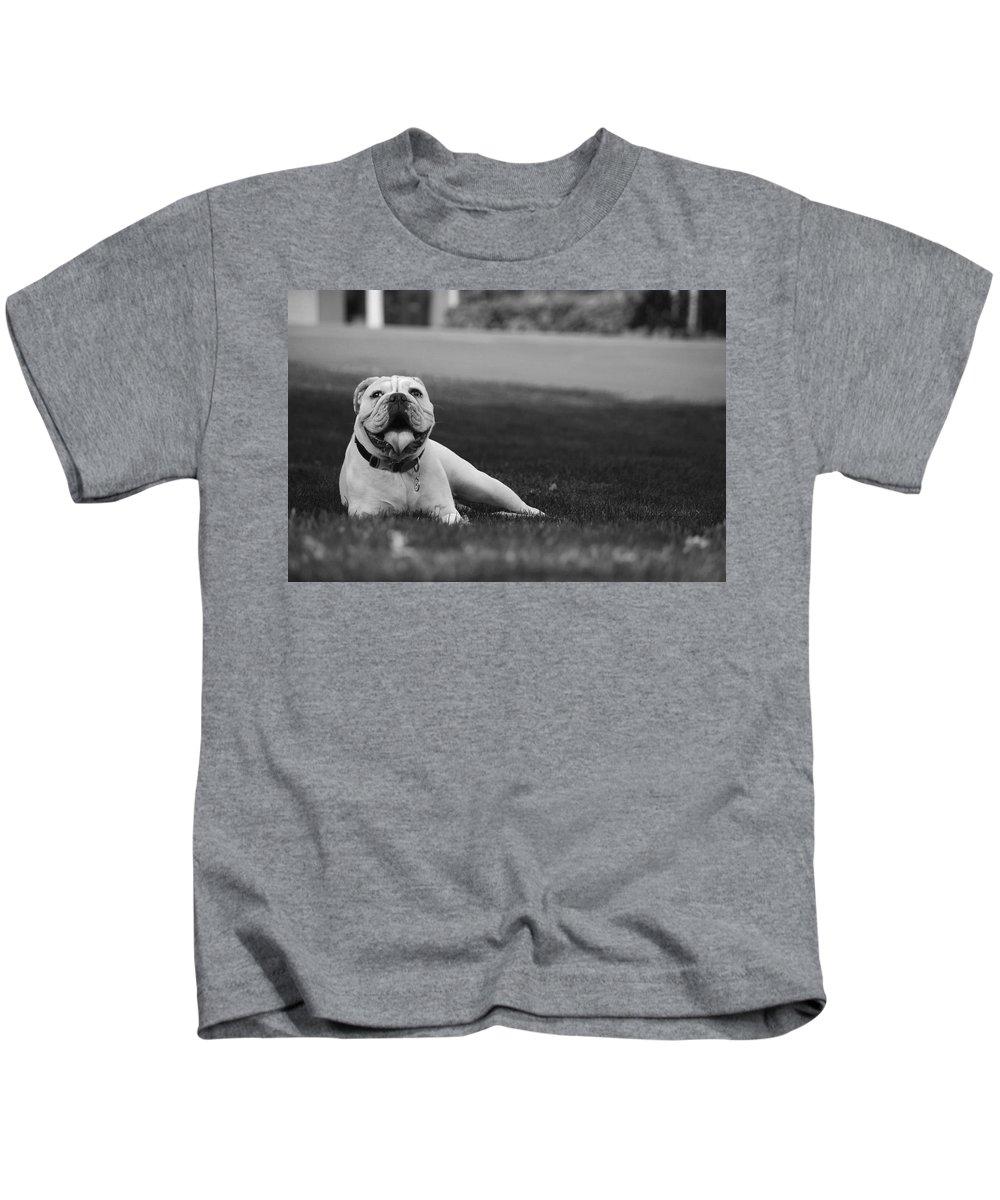 Kids T-Shirt featuring the photograph Bulldog by Karis Tsolomitis