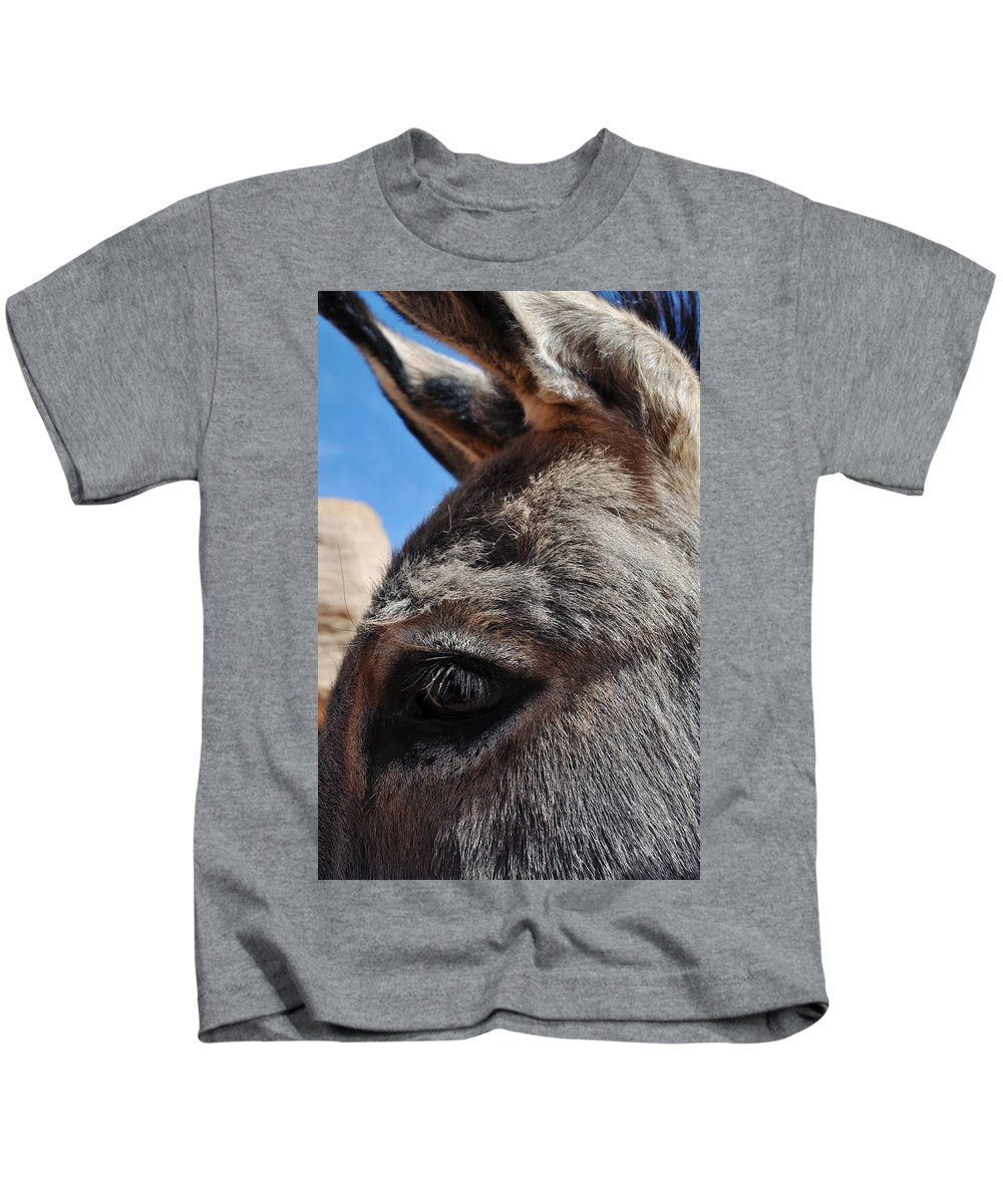 Burro Kids T-Shirt featuring the photograph Burro Utah by Kyle Hanson