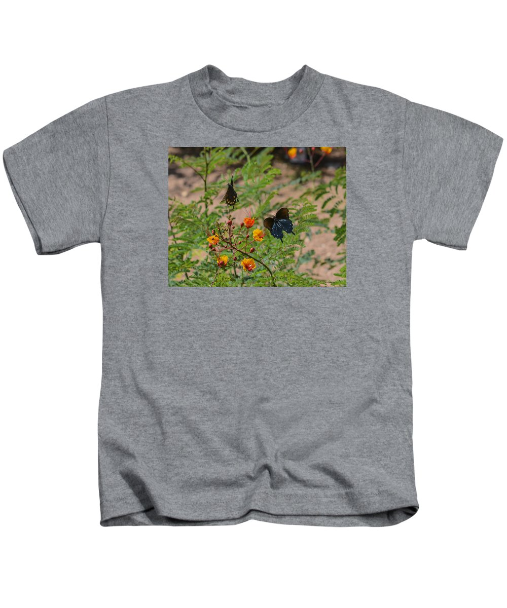 Fredericksburg Kids T-Shirt featuring the photograph Butterfly Ballet by Allen Sheffield