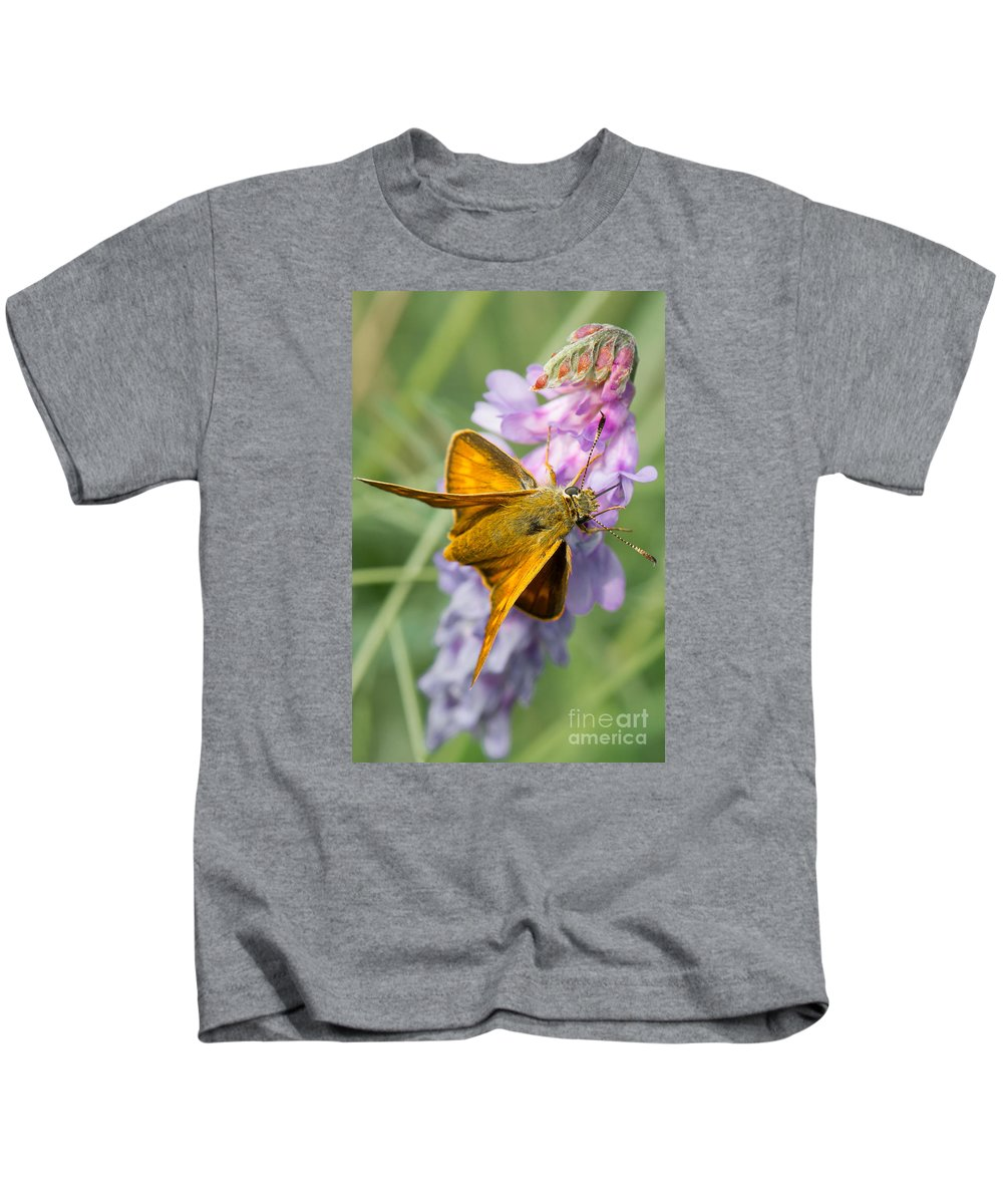 Butterfly Kids T-Shirt featuring the photograph Butterfly On Flower by Valerio Poccobelli
