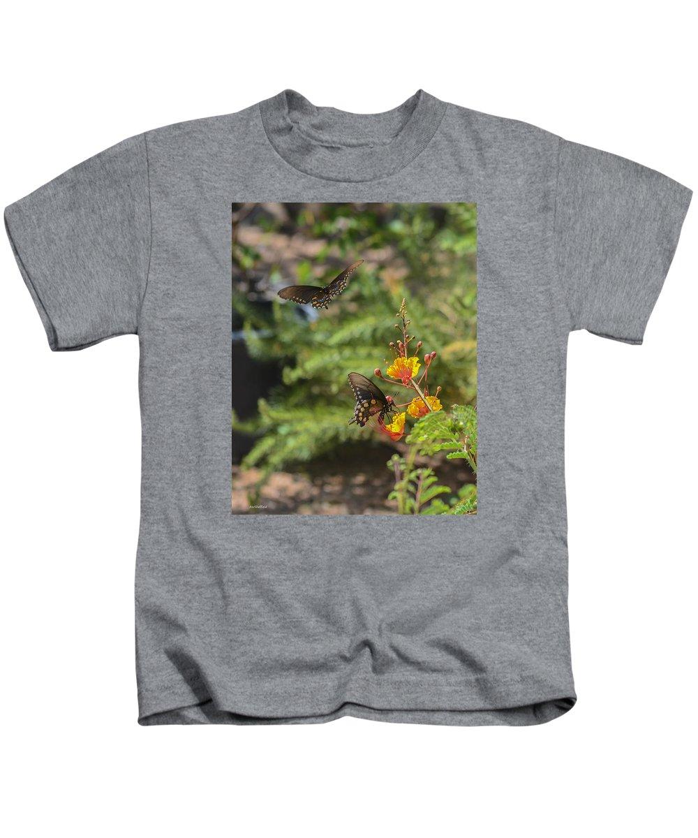 Fredericksburg Kids T-Shirt featuring the photograph Butterfly Pas De Deux by Allen Sheffield