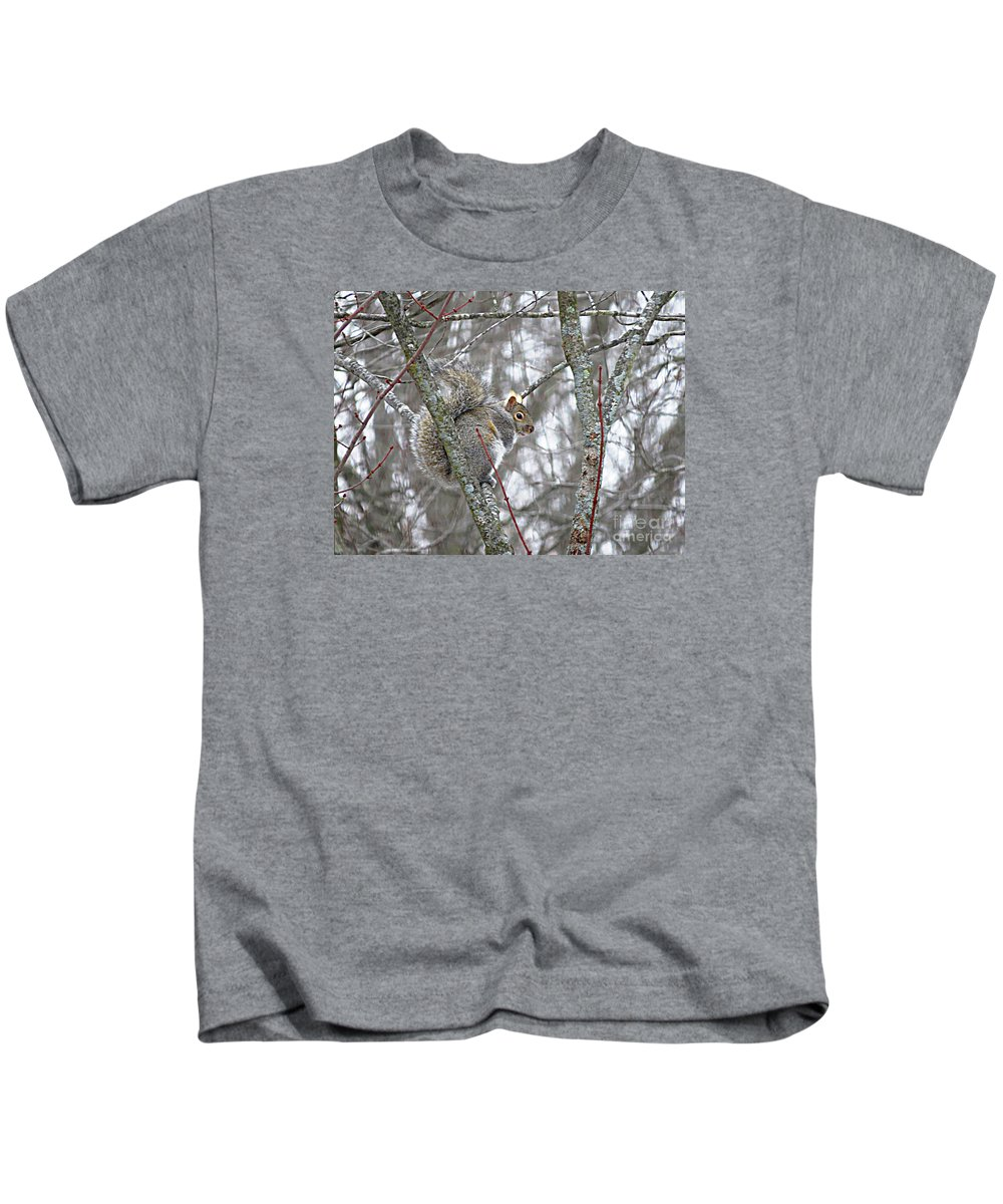 Grey Squirrel Kids T-Shirt featuring the photograph Camera Shy Grey Squirrel by Stephanie Forrer-Harbridge