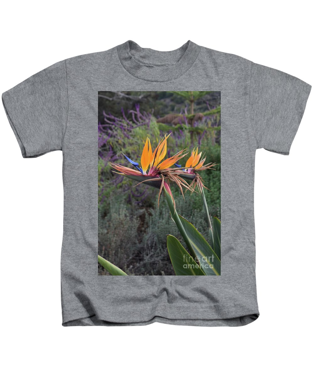 Bird-of-paradise Kids T-Shirt featuring the photograph Captivating Bird Of Paradise In Full Bloom by DejaVu Designs
