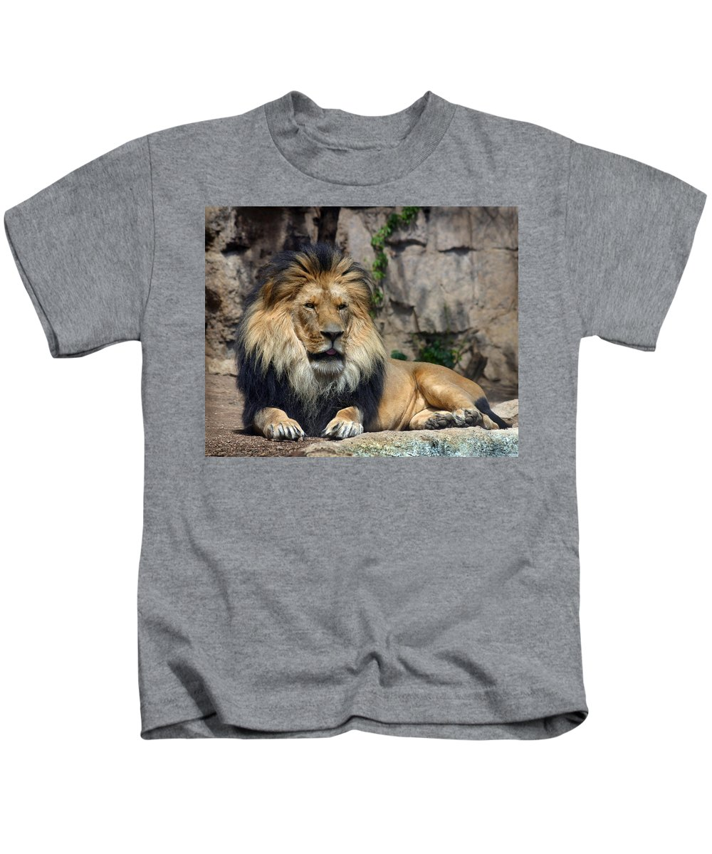 Lion Kids T-Shirt featuring the photograph Captive Pride by Anthony Jones