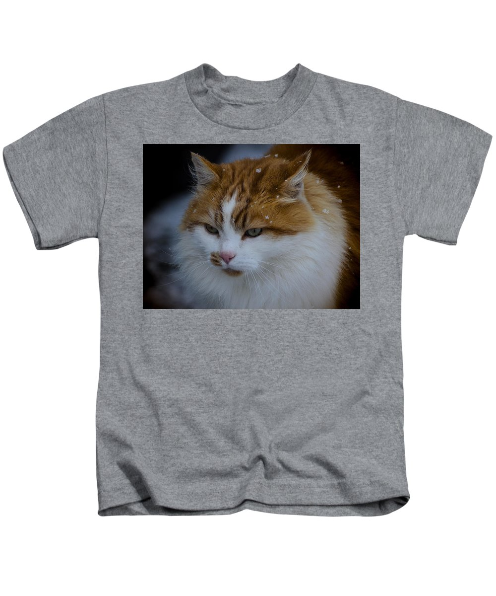 Cat Kids T-Shirt featuring the photograph Cat And Snowflakes by Omer Vautour