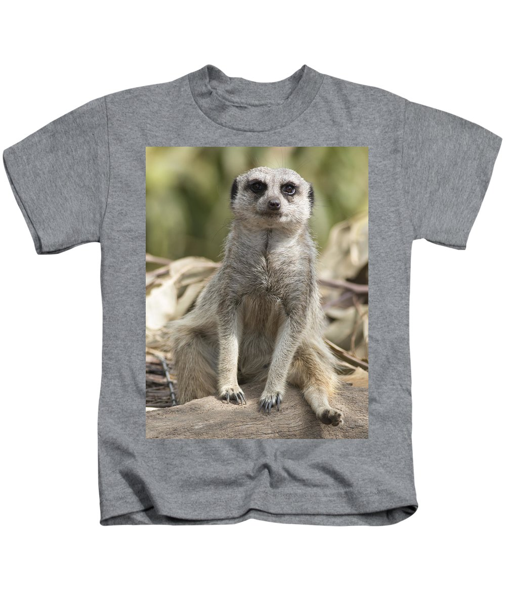 Animal Kids T-Shirt featuring the photograph Check Front by Masami Iida
