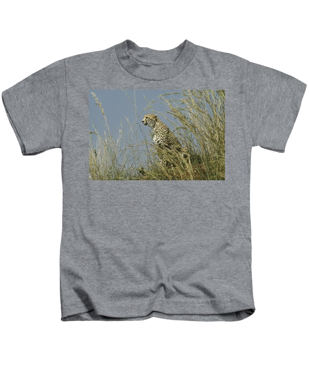 Africa Kids T-Shirt featuring the photograph Cheetah Lookout by Michele Burgess
