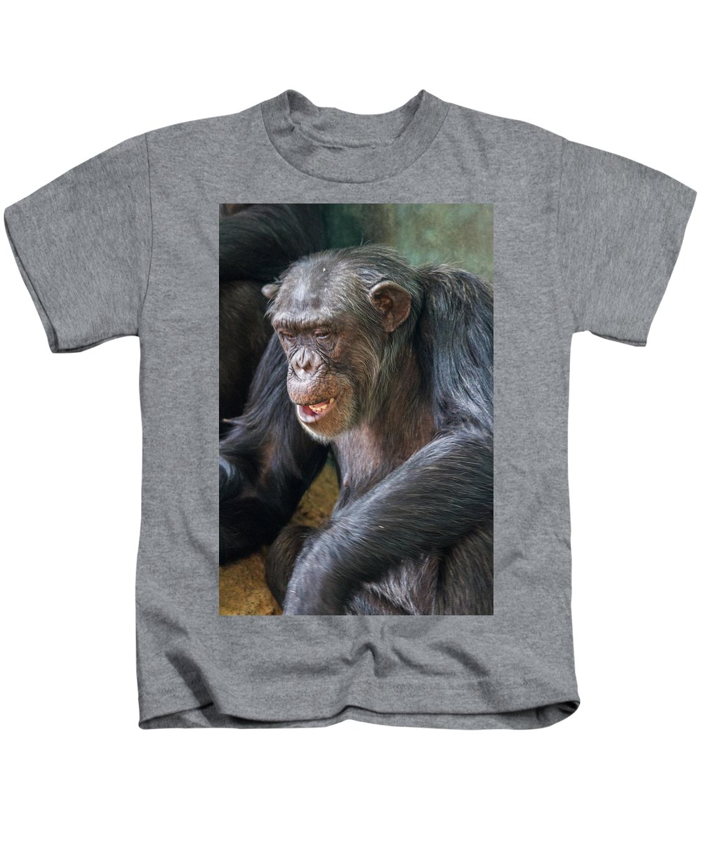 Kids T-Shirt featuring the photograph Chimpanzee Sitting by Mike Burgquist