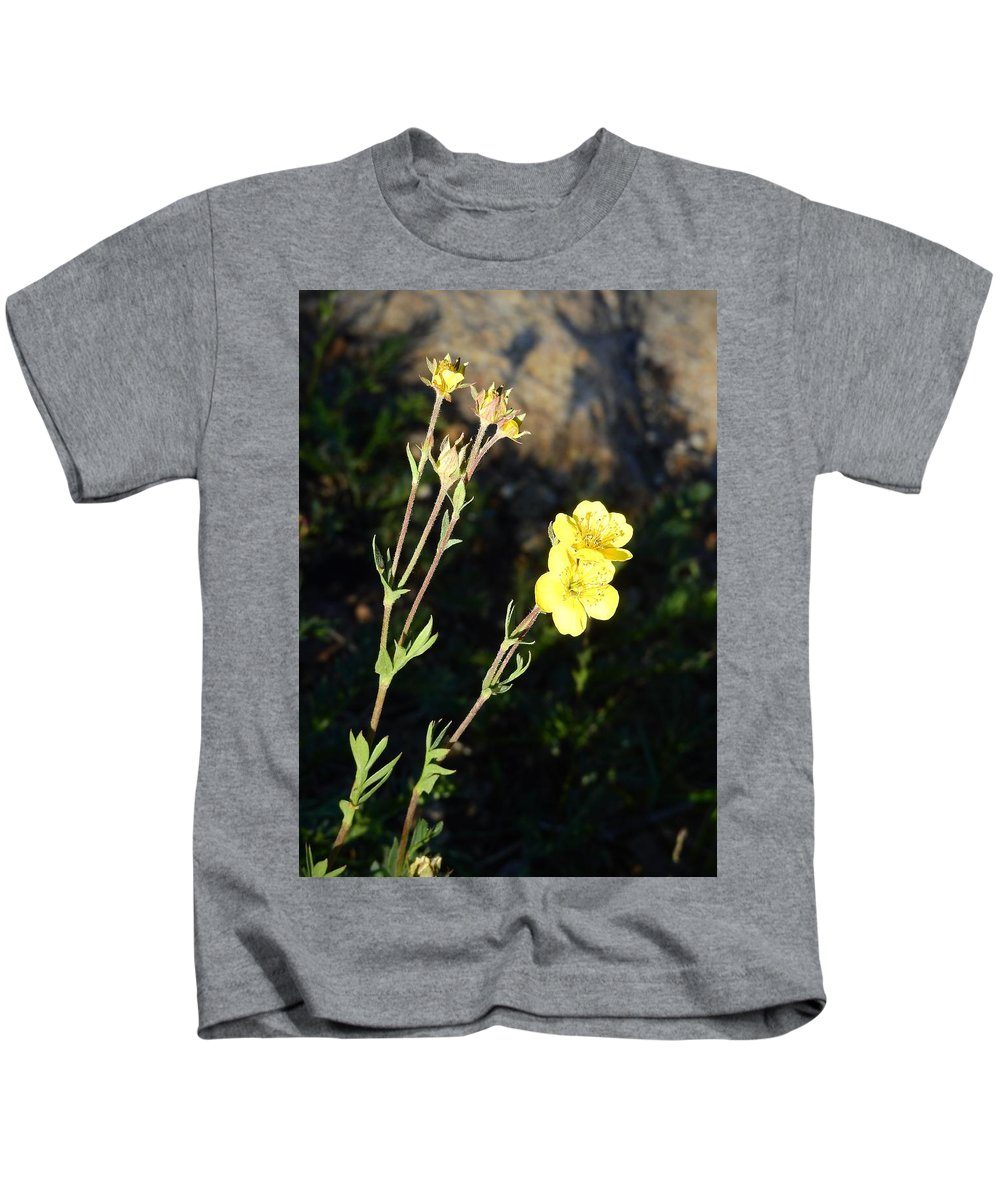 Wildflowers Kids T-Shirt featuring the photograph Colorado Wildflowers by Nicole Belvill