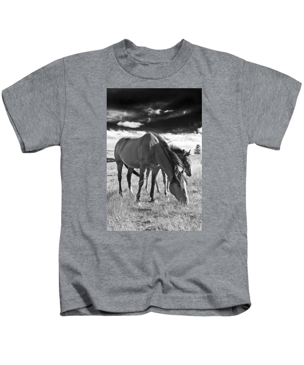 Joseph Kids T-Shirt featuring the photograph Colt 013 by Charles Frates
